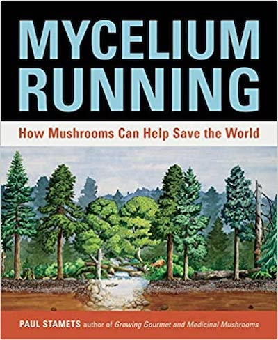 Mycelium Running Paul Stamets